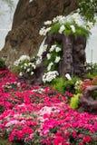 Kwiaty wokoło Hoan Kiem jeziora Obraz Royalty Free