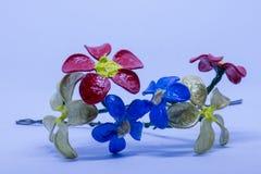 kwiaty wręczają target1648_0_ Obrazy Royalty Free
