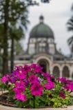Kwiaty z świątynią błogosławieństwa zdjęcie stock