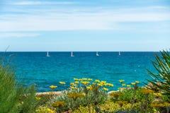 Kwiaty z cztery żaglówkami Błękitny niebo i woda morska Fotografia Stock