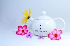 Kwiaty z teapot zdjęcie royalty free