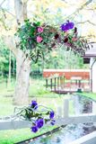 Kwiaty z wystrojem i białym drewnem Obraz Royalty Free
