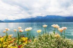 Kwiaty zbliżają jezioro, Montreux. Szwajcaria Fotografia Royalty Free