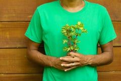 kwiaty zielenieją mienia mężczyzna koszula Zdjęcie Royalty Free