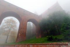 Kwidzyn城堡和大教堂在有雾的日 免版税库存图片
