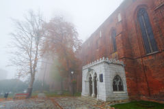 Kwidzyn Cathedral in foggy weather. Foggy scenery of Kwidzyn castle and cathedral, Poland Royalty Free Stock Images