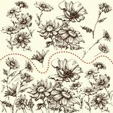 kwieciści dekoracyjni elementy dużo ustawiają Kolekcja ręka rysujący kwiaty royalty ilustracja