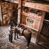 KWIECIEŃ 22, 2017, RIDGWAY KOLORADO: Kowbojów comberów koń na Centennial rancho, Ridgway, Kolorado - bydło rancho posiadać Vince  Fotografia Stock