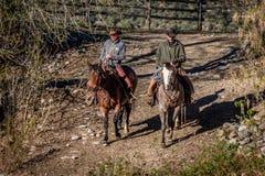 KWIECIEŃ 22, 2017, RIDGWAY KOLORADO: Kowboje jadą konia na Centennial rancho, Ridgway, Kolorado - bydło rancho posiadać Vince Kot Zdjęcia Royalty Free