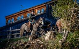 KWIECIEŃ 22, 2017, RIDGWAY KOLORADO: Kowboje jadą konia na Centennial rancho, Ridgway, Kolorado - bydło rancho posiadać Vince Kot Obrazy Royalty Free
