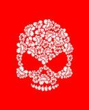 Kwiecista czaszka na czerwonym tle Białe róże i kościec głowa B Fotografia Royalty Free