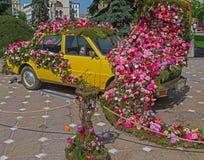 Kwiecista dekoracja stary samochód w zwycięstwo kwadracie, Timisoara, Ro Fotografia Royalty Free