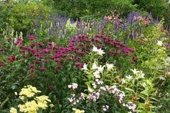 Kwiecista granica w Angielskim ogródzie. Fotografia Royalty Free