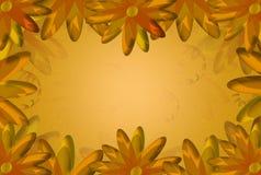 Kwiecista karta, kwiecisty wzór (kwiecisty tło) Obrazy Stock