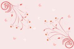 kwiecista ślimacznica Obraz Royalty Free