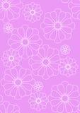 kwiecista różowa ładna tkanina Obrazy Stock