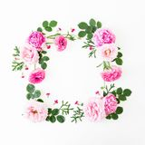 Kwiecista rama robić lodowisko liście i róże na białym tle Mieszkanie nieatutowy, odgórny widok kwiat światła playnig tło obraz royalty free