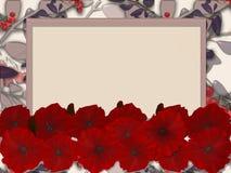 Kwiecista rama z kwiatami maczek i rowanberry Obraz Stock