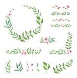 Kwiecista Ramowa kolekcja i elementy Set śliczni retro kwiaty układał un kształt wianek Zdjęcia Royalty Free