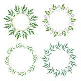 Kwiecista Ramowa kolekcja Set śliczny retro liść układał un kształt wianek Fotografia Royalty Free