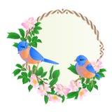 Kwiecista round rama z dzikimi różami i ślicznego małego singings ptaków bluebirds rocznika świątecznego tła wektorowa ilustracja royalty ilustracja