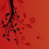 kwiecista tło czerwień Obraz Stock