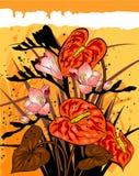 kwiecista tło pomarańcze Obrazy Royalty Free