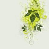 kwiecista tło zieleń ilustracja wektor