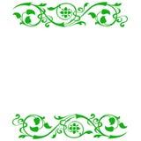 kwiecista tło zieleń Zdjęcia Royalty Free