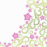 kwiecista tło wiosna Obrazy Royalty Free