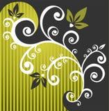 kwiecista tło zieleń Obraz Royalty Free