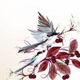 Kwiecista wektorowa ilustracja z ptakami i gałąź royalty ilustracja