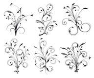 Kwieciste dekoracje Fotografia Stock