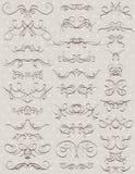 Kwieciste dekoracyjne granicy, ornamentacyjne reguły, divid Fotografia Royalty Free