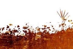 Kwieciste stylowe tekstury odizolowywać na bielu Zdjęcia Stock