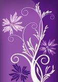 kwieciste tło purpury Fotografia Royalty Free
