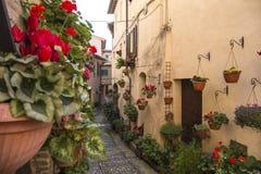 Kwieciste ulicy Spello w Umbria, Włochy Obrazy Royalty Free