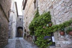 Kwieciste ulicy Spello w Umbria, Włochy Obrazy Stock