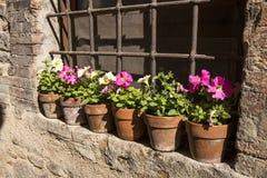 Kwieciste ulicy Spello w Umbria, Włochy Obraz Royalty Free