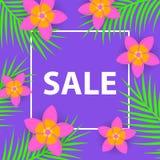 Kwiecistego frangipani plumeria kwiatów i kokosowej palmy liści kwadrata tropikalna rama Obrazy Stock
