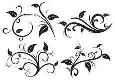 Kwiecistego ornamentu elementu kolekcja Obrazy Royalty Free