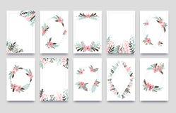 Kwiecistego ornamentu zaproszenia karta Wierzbowa liść ramy granica, ornamentuje rama kąty i ornamentacyjnej gałązki ślubne karty royalty ilustracja