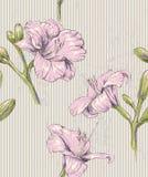 Kwiecistego rocznika bezszwowy wzór Zdjęcia Royalty Free