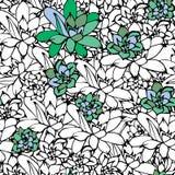 Kwiecisty bezszwowy konturowy wektoru wzór z Echeveria Tkanina druku projekt Sukulent dekorująca tkaniny powierzchnia Ręka royalty ilustracja