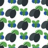 Kwiecisty bezszwowy wzór z śliwki natury żniwa owocowej jarskiej witaminy tła wektoru słodką jagodową ilustracją ilustracji