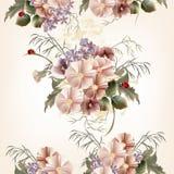Kwiecisty bezszwowy wzór z śródpolnymi kwiatami Zdjęcie Stock