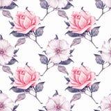 Kwiecisty bezszwowy wzór z pięknymi różami 2 Zdjęcia Stock