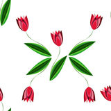 Kwiecisty bezszwowy wzór z rozrzuconymi tulipanami na białym tle Zdjęcia Stock