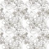 Kwiecisty bezszwowy wzór z wildflowers Obrazy Royalty Free
