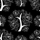 kwiecisty deseniowy bezszwowy wektor Zdjęcie Royalty Free
